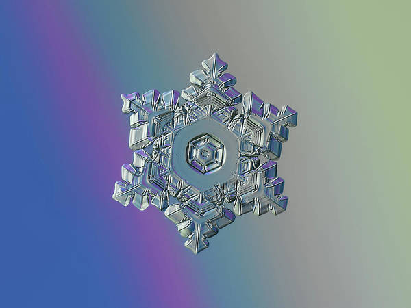 Photograph - Real Snowflake - 05-feb-2018 - 9 Alt by Alexey Kljatov