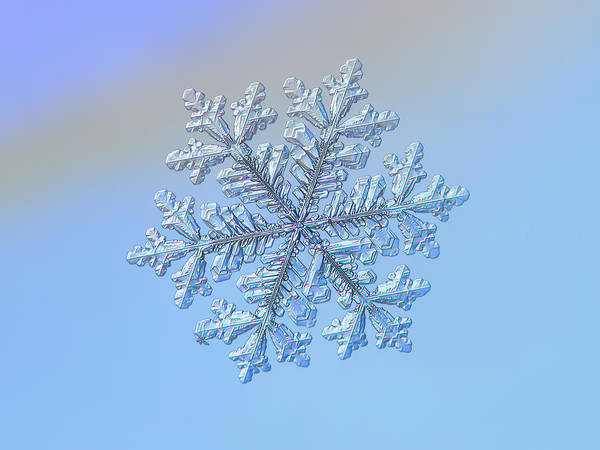 Photograph - Real Snowflake - Hyperion by Alexey Kljatov