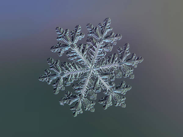 Photograph - Real Snowflake - Hyperion Dark by Alexey Kljatov