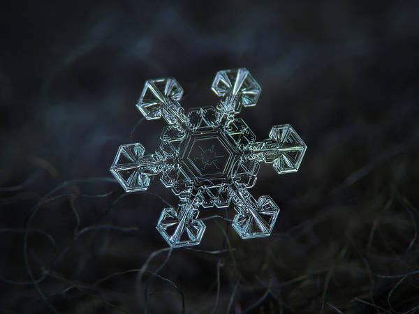 Photograph - Real Snowflake - Ice Crown New by Alexey Kljatov