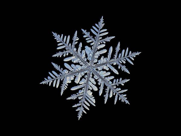 Real Snowflake - Silverware Black Art Print