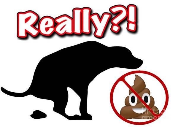 Really No Poop Art Print