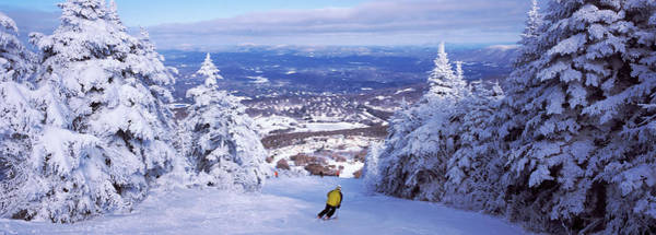 Wall Art - Photograph - Rear View Of A Person Skiing, Stratton by Panoramic Images