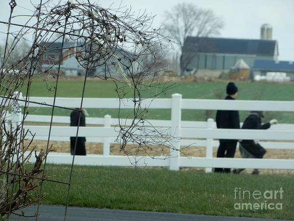 Photograph - Recess Time In April by Christine Clark