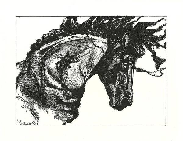 Friesian Drawing - Reclamation by Audrey Tarlton