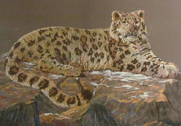 Food Chain Painting - Reclining Snow Leopard by Mike Stockwell