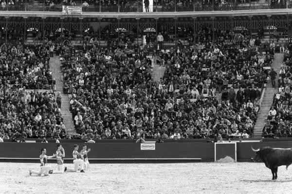 El Toro Photograph - Recortadores by Albert  Martinez pardo