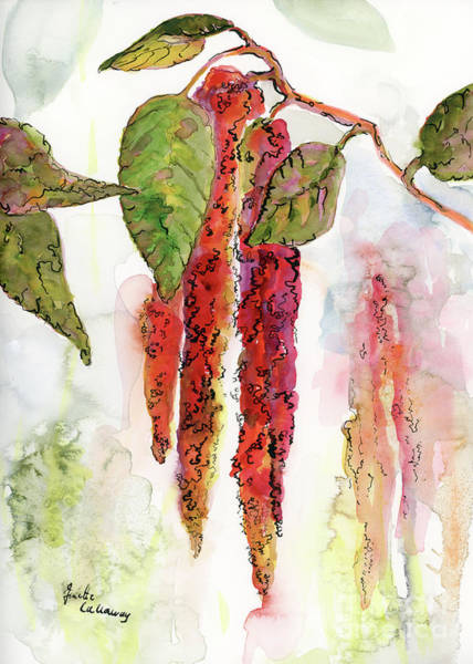 Painting - Red Amaranth Modern Botanical  by Ginette Callaway
