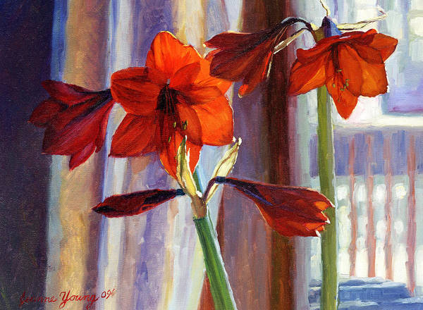 Red Amaryllis Painting - Red Amaryllis by Jeanne Young