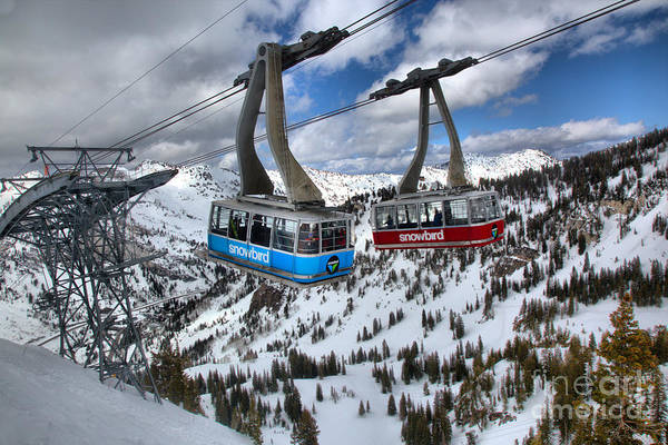 Photograph - Red And Blue Snowbird Trams by Adam Jewell