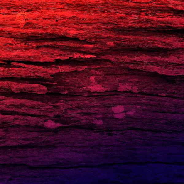 Painting - Red And Deep Purple Shabby Wood Grunge Design by Joy of Life Arts