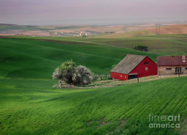 North Idaho Photograph - Red And Green by Idaho Scenic Images Linda Lantzy