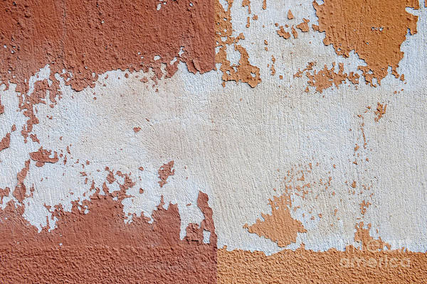 Wall Art - Photograph - Red And Orange Abstract by Elena Elisseeva