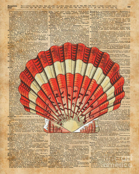 Wall Art - Digital Art - Red And White Ocean Sea Shell Dictionary Book Page Art by Anna W