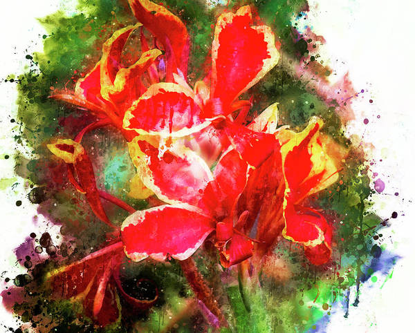 Wall Art - Digital Art - Red And Yellow Lilies by Mary Machare