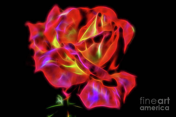 Digital Art - Red And Yellow Rose Fractal by Tracey Everington