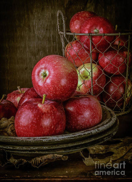 Photograph - Red Apples In The Barn by Edward Fielding