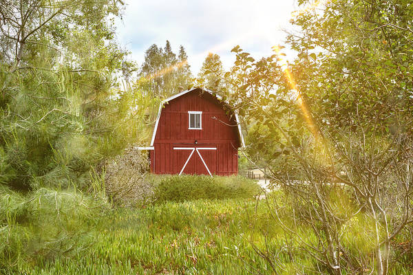 Photograph - Red Barn by Alison Frank