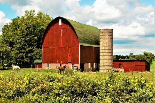 0040 - Red Barn And Horses Art Print