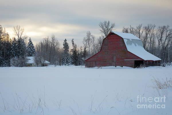 Wall Art - Photograph - Red Barn At Dawn by Idaho Scenic Images Linda Lantzy