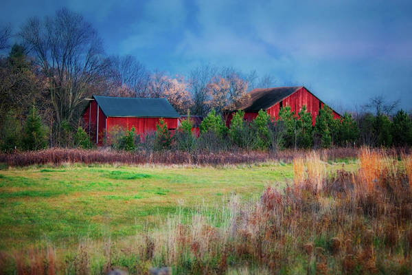 Wall Art - Photograph - Red Barn At Retzer Nature Center by Jennifer Rondinelli Reilly - Fine Art Photography