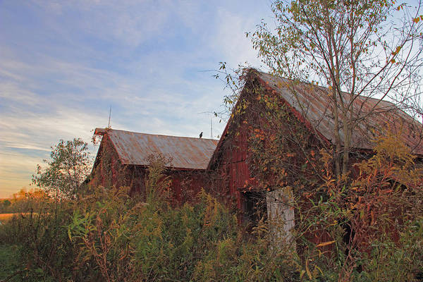 Photograph - Red Barn At Sunset by Angela Murdock