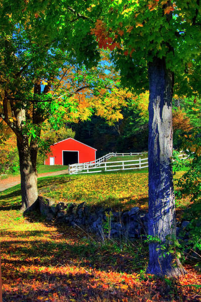 Photograph - Red Barn In Autumn - Keane, Nh by Joann Vitali