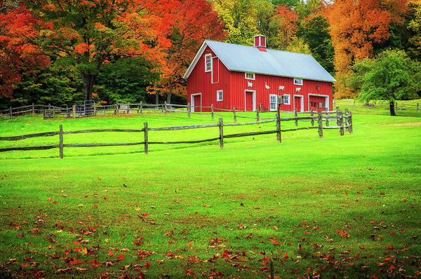 Photograph - Red Barn In Autumn-woodstock Vt by John Vose