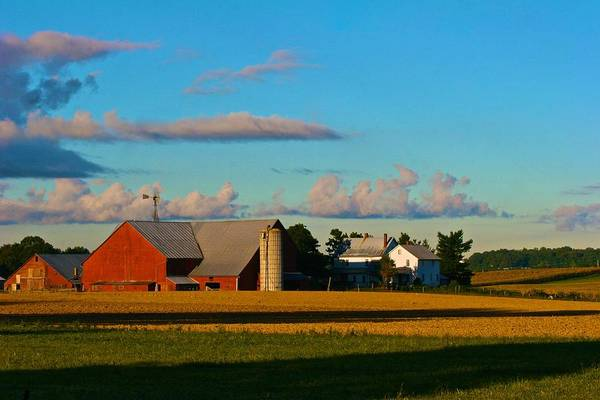 Photograph - Red Barn In Evening Sun by Polly Castor