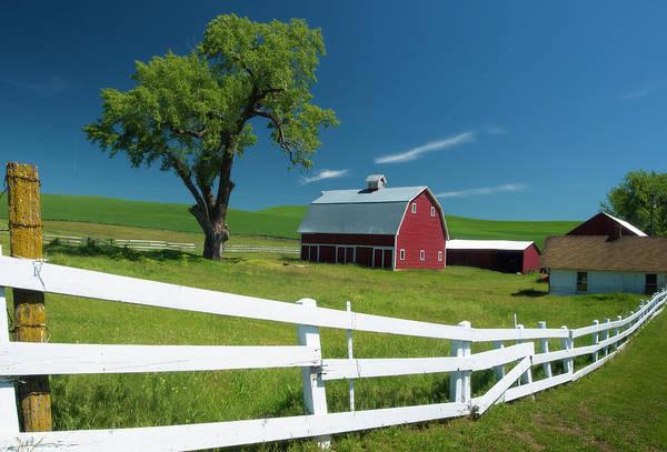 Photograph - Red Barn In Palouse Washington by Matt Shiffler