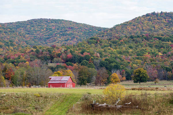 Photograph - Red Barn In The Fall by M C Hood