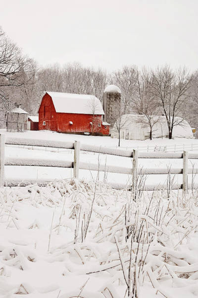 Photograph - Red Barn In Winter by Jill Love