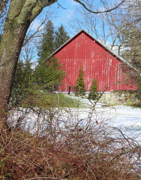 Photograph - Red Barn by Melinda Blackman