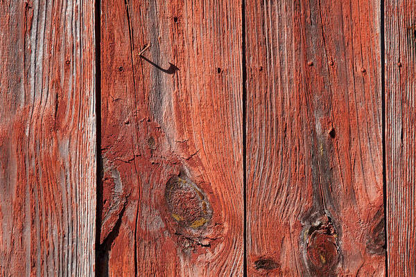 Photograph - Red Barn Planks by David Letts