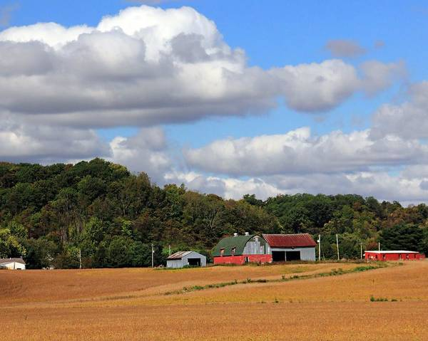 Photograph - Red Barns In The Countryside by Angela Murdock