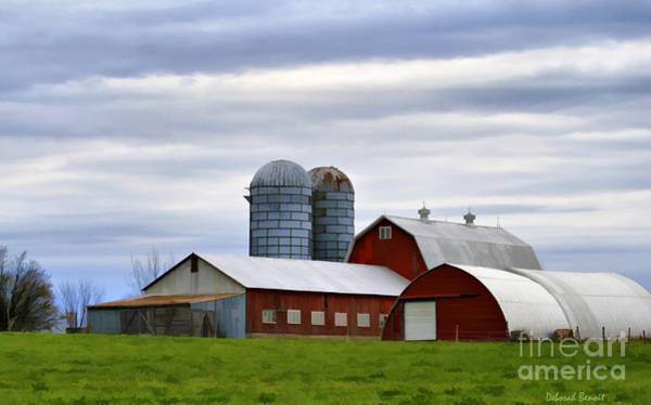 Photograph - Red Barns Of 3 by Deborah Benoit