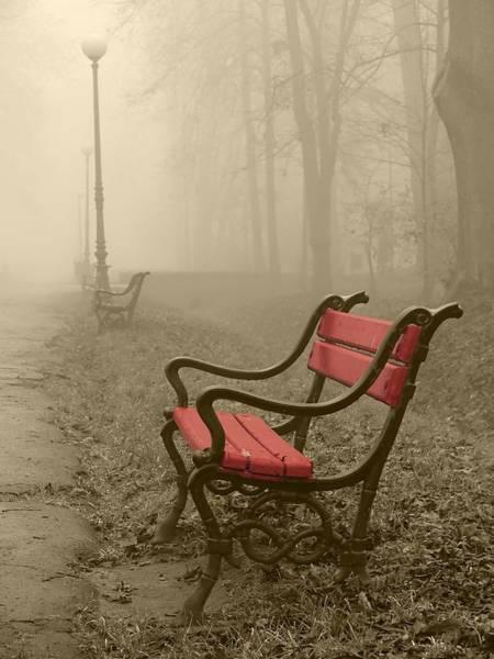 Red Bench In The Fog Art Print by Jaroslaw Grudzinski