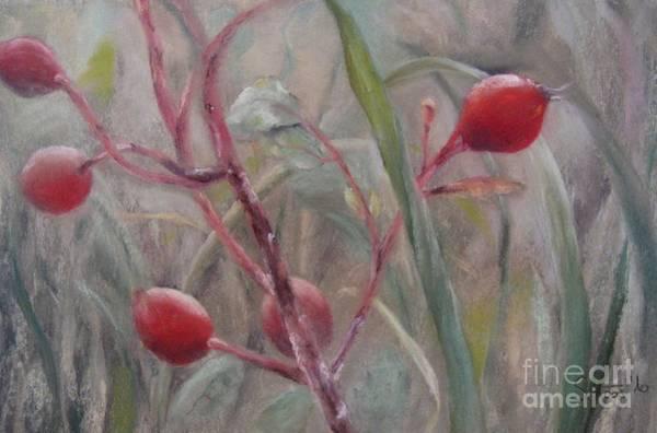 Wall Art - Painting - Red Berries II by Sabina Haas