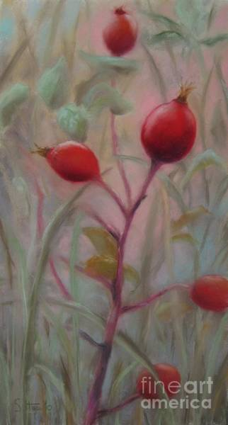 Wall Art - Painting - Red Berries IIi by Sabina Haas