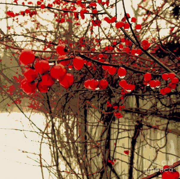 Snow Fence Digital Art - Red Berries In Winter by Susan Lafleur