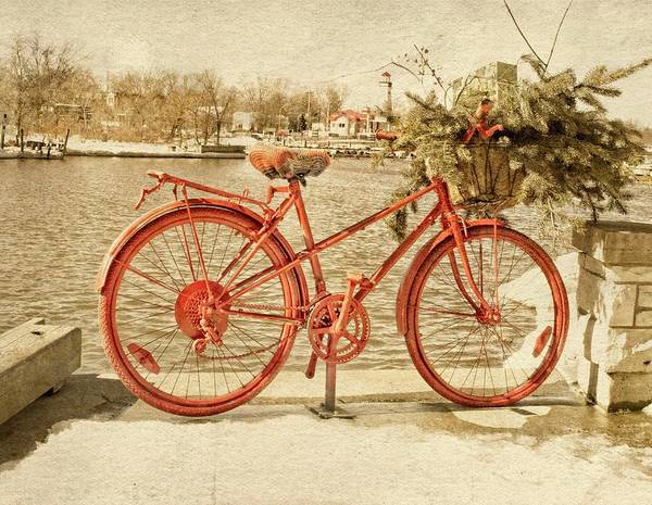 Photograph - Red Bicycle by Garvin Hunter