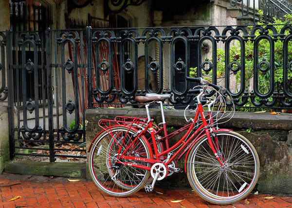 Photograph - Red Bicycles by Nicholas Blackwell