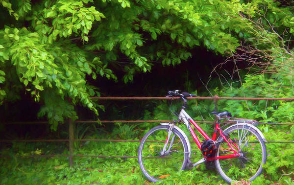 Maynooth Photograph - Red Bike In The Country by CJ Middendorf