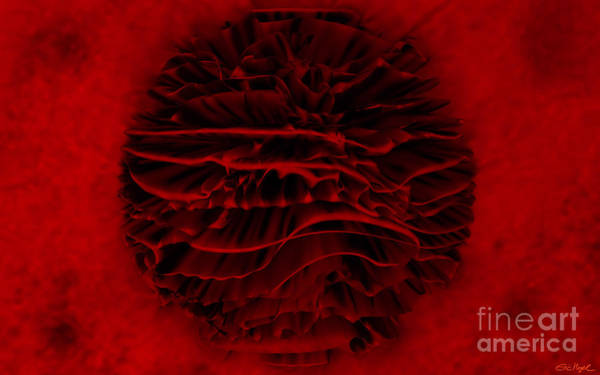 Wall Art - Digital Art - Red Blossom by Eric Nagel