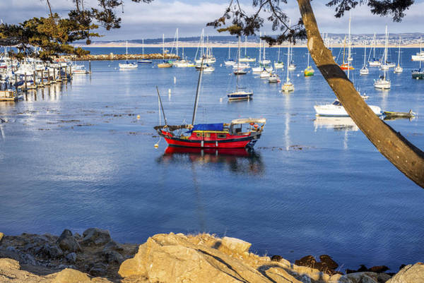 Monterey Bay Photograph - Red Boat In Monterey by Joseph S Giacalone