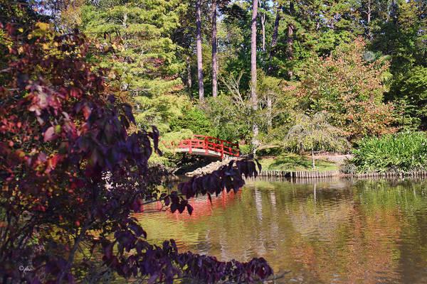 Photograph - Red Bridge - Duke Gardens by Paulette B Wright