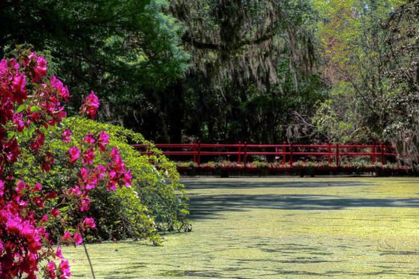Wall Art - Photograph - Red Bridge Pond by Drew Castelhano
