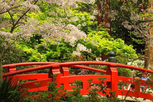 Photograph - Red Bridge Springtime by James Eddy