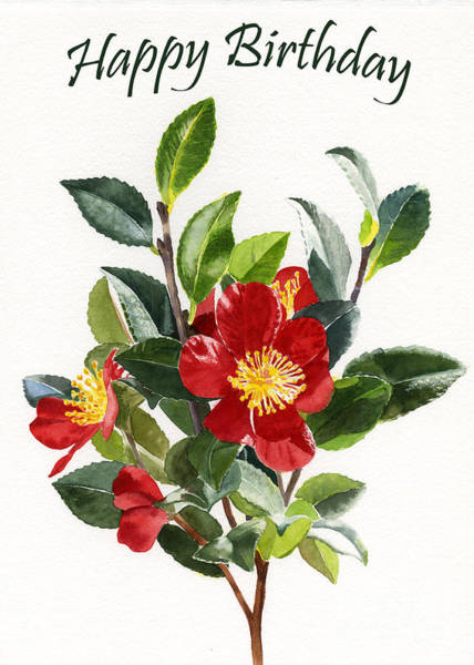 Wall Art - Painting - Red Camellia Birthday Card 1 by Sharon Freeman