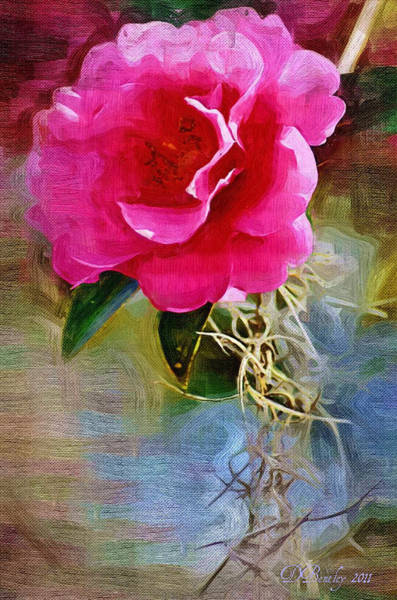 Photograph - Red Camellia by Donna Bentley
